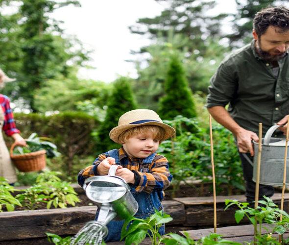 Dobbies Announces Return of Little Seedlings Event